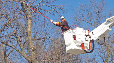 Photo of bucket truck service from North Hills Tree & Lawn Services in Gibsonia PA near me