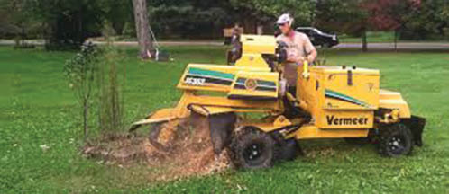Photo of stump grinding service from North Hills Tree & Lawn Services in Gibsonia PA near me