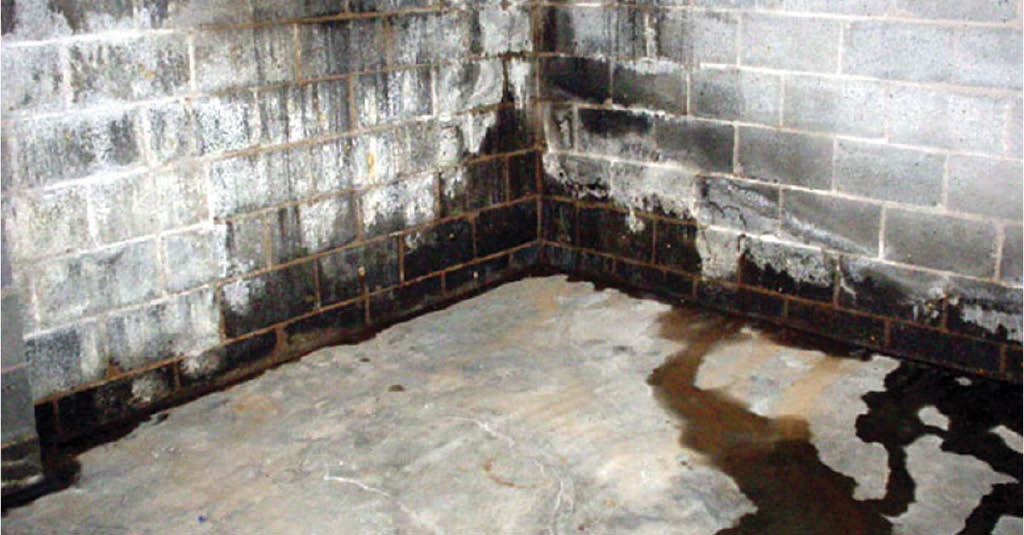 Basement waterproofing near Papillion