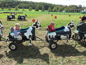 Birthday Parties at Ort Farms in Long Valley NJ