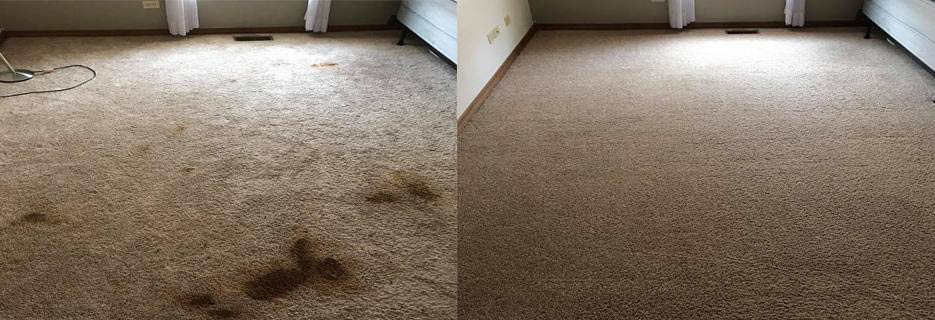 Before an after of bedroom carpet. by Pristine Kleen.