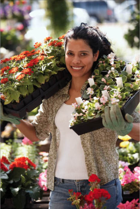 Garden center worker carrying 2 flats of flowers.