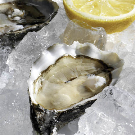 shelled oysters on ice