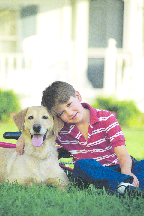 Pets and kids love the yard outdoors