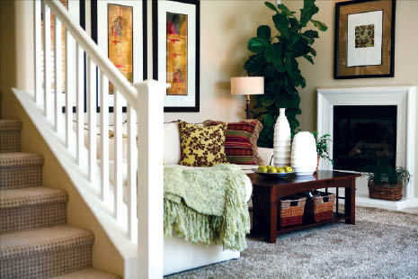Stains that have been on the furniture or carpet for many years may discourage some customers from trying to repair the damage.