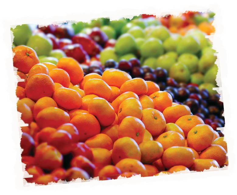 Delicious fruits and vegetables at Rockaway Farmers Market in Rockaway NJ.