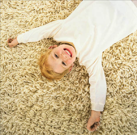 b & b carpet cleaning professionals