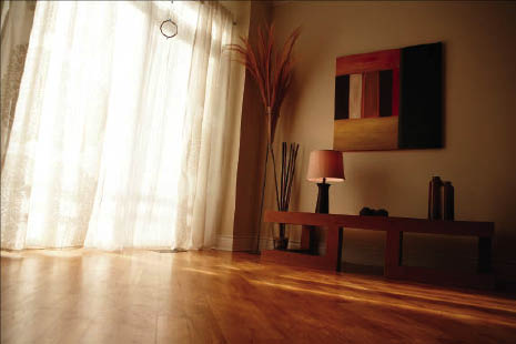 Hardwood Floors Stanley Steemer