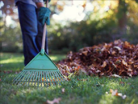 bring your landscape ideas to life with lawn care in Joliet, IL Contact us today: 630-590-9677