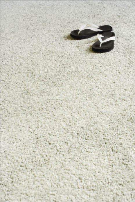 At Castle Carpet Cleaning in Franklin WI offers Tile and carpet cleaning safe for pets and kids.
