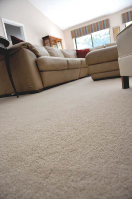 Whole house carpet cleaning services with Sani-Kleen