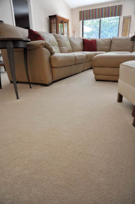tan carpet in living room - Express Flooring Professional Carpet Installation Service Phoenix, AZ