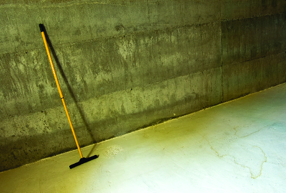 waterproofing home basement mold Problems such as wet basements, bowing and sagging floors, damp crawl spaces