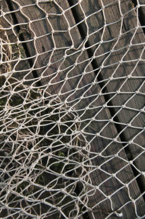 A picture of a net on a wooden table