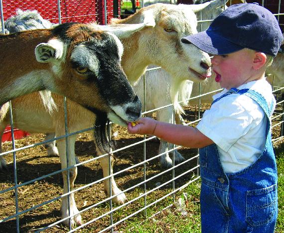 kenneth j frei farm insurance