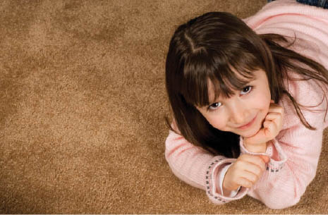 At Castle Carpet Cleaning in Kenosha, WI offers Upholstery Cleaning with Scotchgard.