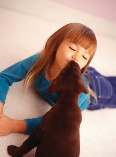 Our cleaning products are child and pet friendly