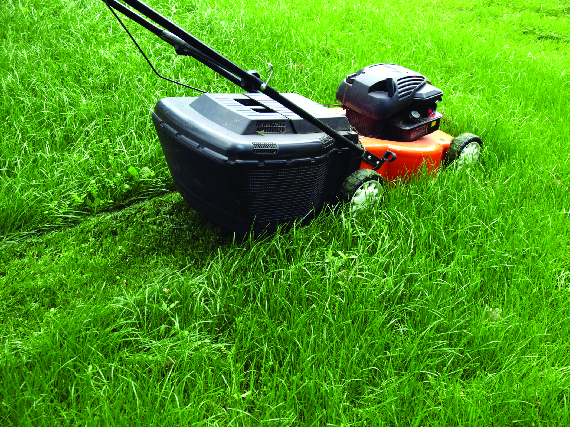Greg's Lawn Mower and Small Engine Repair in Lake Bluff can service your lawn mower.