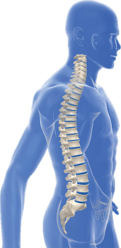 pain management in kansas city, pain management in lenexa ks, pain and health management, back pain diagnosis, treatment for back pain, treatment for pain, pain free evaluation in kansas city, pain free evaluation in lenexa ks
