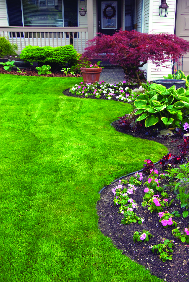 Seasonal landscaping ideas for front yard