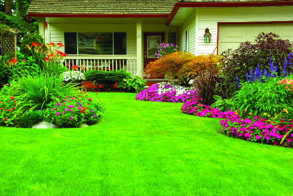 Lawn and flower garden landscaping