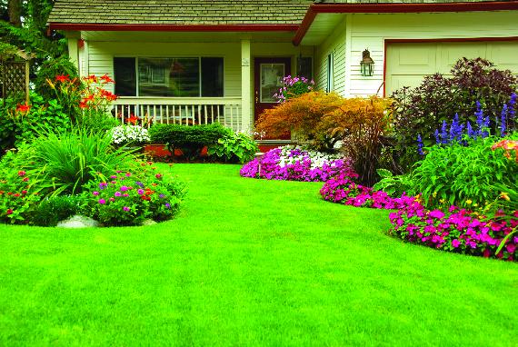 Lawn care in Beacon