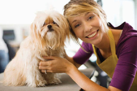 pet grooming Las Vegas coupons