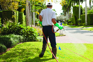 Lawn treatment, lawn care