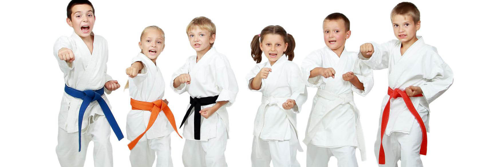 Martial Arts at Custom Workouts
