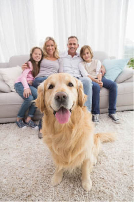smiling family with happy dog after affordable vet care naperville, il