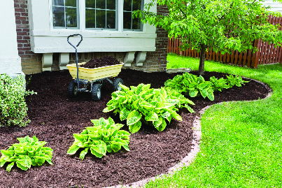 New mulch in a flower bed.