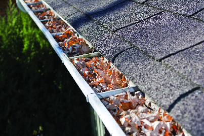 Leaf clogged gutters
