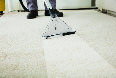 professional carpet cleaning near San Diego California