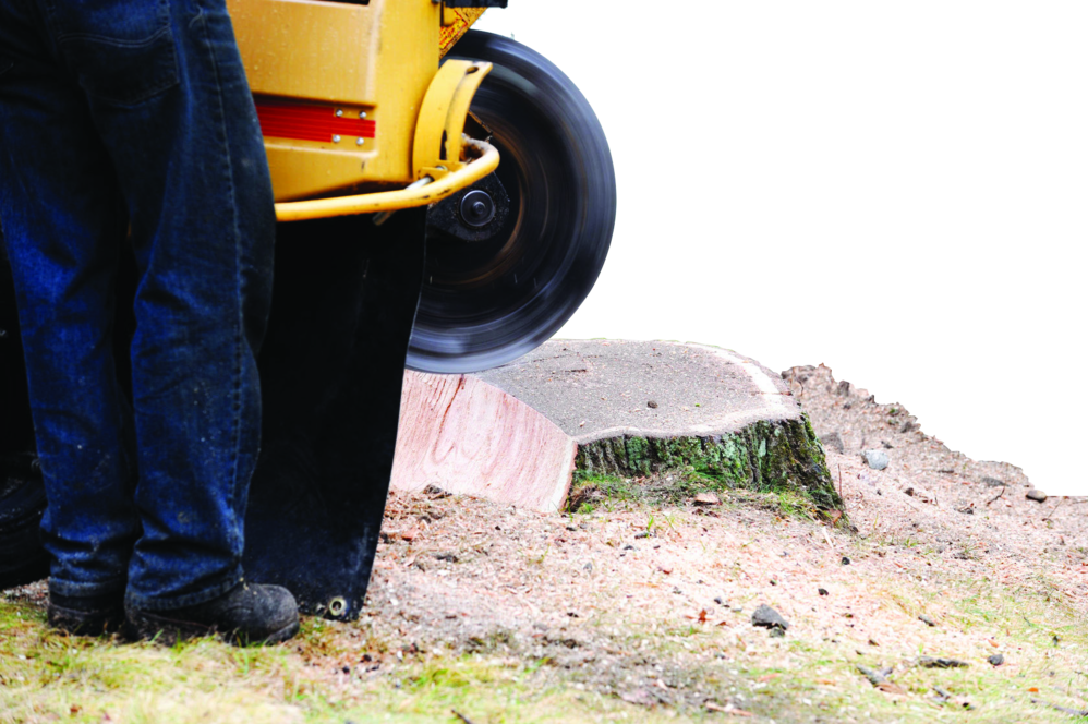The best equipment to removal tree stumps