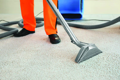 affordable carpet cleaning available in the greater Chicago area