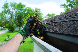 Gutter-Cleaning