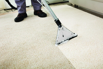 carpet steam cleaner highland in