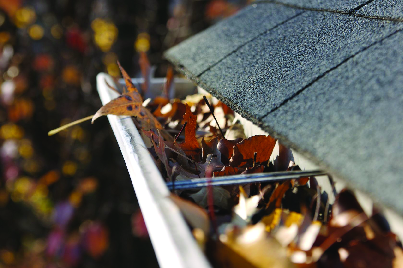 Leafy gutters can block drainage
