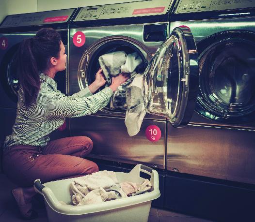 laundry pick up elmont