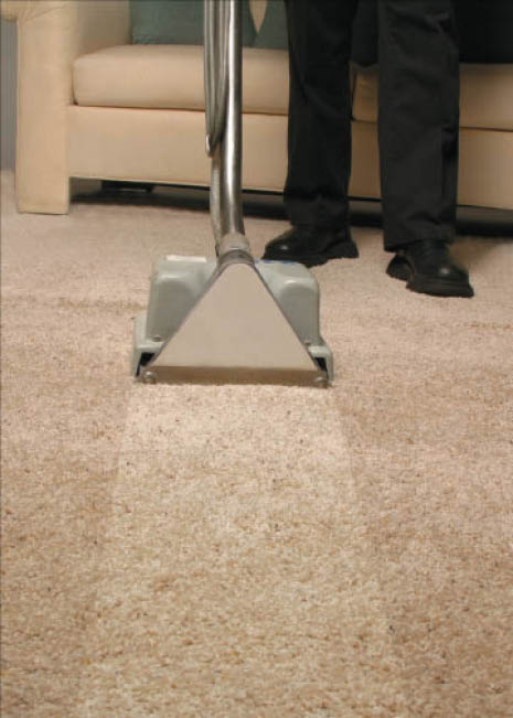 Totally Clean Carpet Cleaning carpet cleaning in Pewaukee, WI