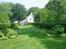 Pauley Tree Fairfield County CT lawn care