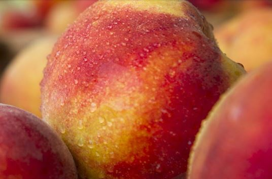 Peaches, Fresh, Produce, Fruit, Farm Markets, Organic