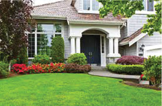 Get lawn care in Arlington Heights