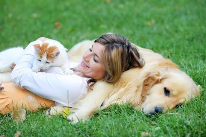 Print mailer; best dog food, dog treats; dog toys; dog crates; Pet Pros Portland, OR
