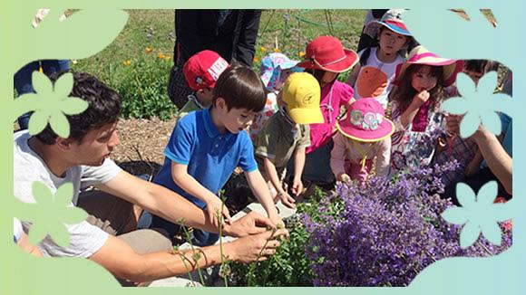 Education for children - Bellevue schools - Pikake School in Bellevue, WA - Montessori