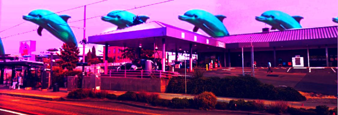 Pink Dolphin Car Wash in Tacoma, WA banner image