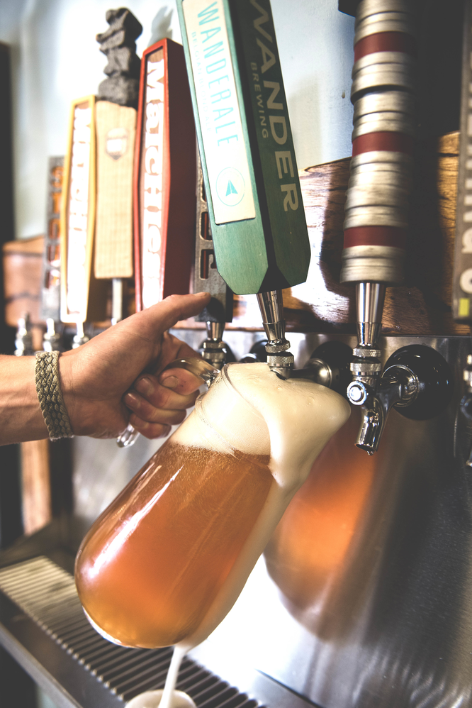 beer, local brewery, brew, taps