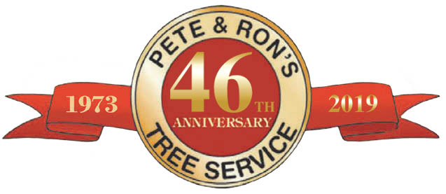 tree care services pete & ron's tree service, inc. tampa, st. petersburg, palm harbor