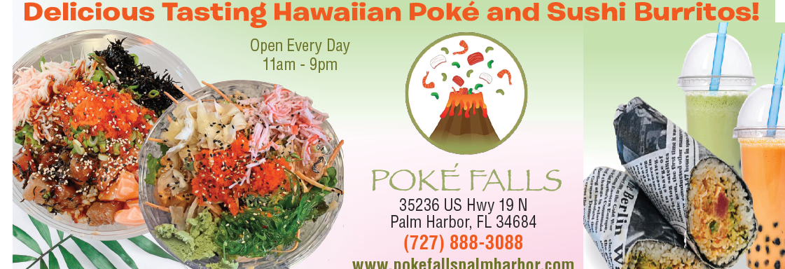 Poke Falls in Palm Harbor, Florida banner