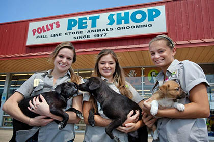 Polly's Pet Shop Welcome